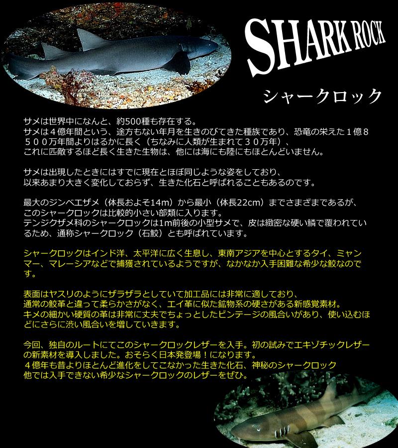 sharkrock01